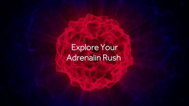 AMD risolve le schermate nere con il Radeon Adrenalin Software 20.2.2