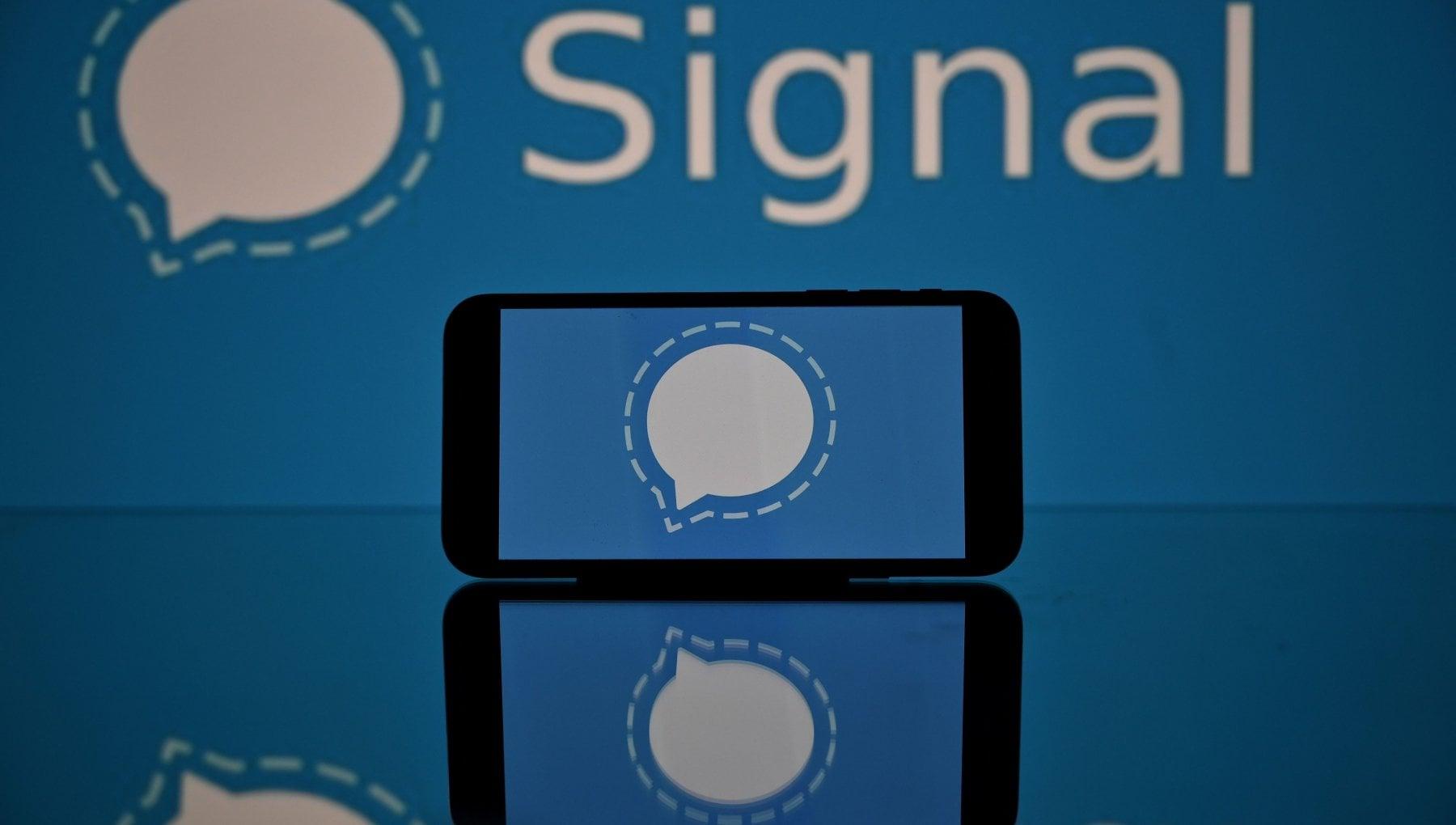 Signal, l'app per chat che sfida WhatsApp: privacy e trasparenza al primo posto